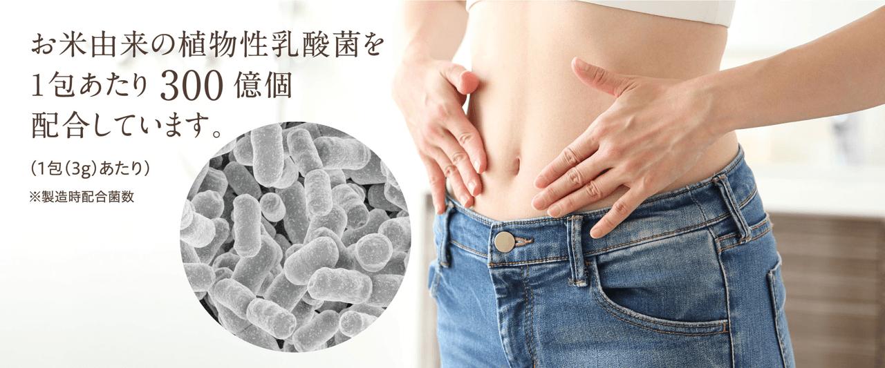 植物性乳酸菌1包あたり300億個配合